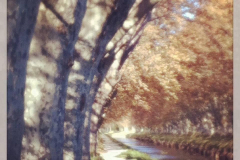 Narbonne. Chemin de halage. Canal de la Robine