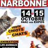 """Petite parabole sur le rayonnement d'équipements """"structurants"""" (Le parc des expositions de Narbonne)"""