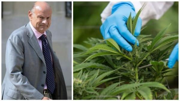 depenalisation-du-cannabis.jean-marie-le-guen-veut-rouvrir-le-debat